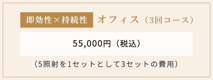 オフィス(3回コース)55,000円(税込)