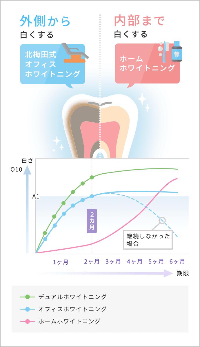 デュアルホワイトニング効果のグラフ